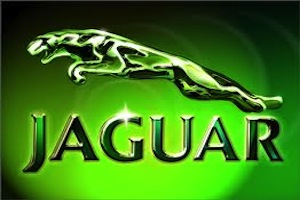 CLICK HERE FOR JAGUAR PRODUCT INFO